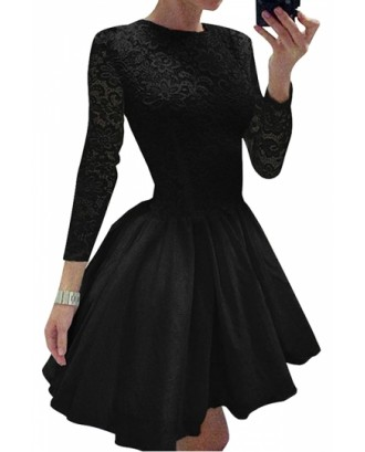 Elegant Plain Long Sleeve Lace Mini Skater Dress Black